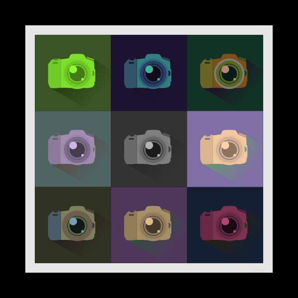 SLR digital camera icons vector graphics