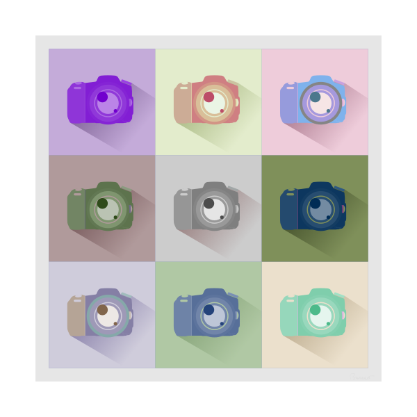 SLR digital photo camera icon set vector image