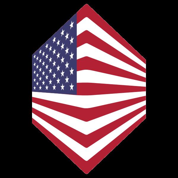 America USA Flag Perspective 2
