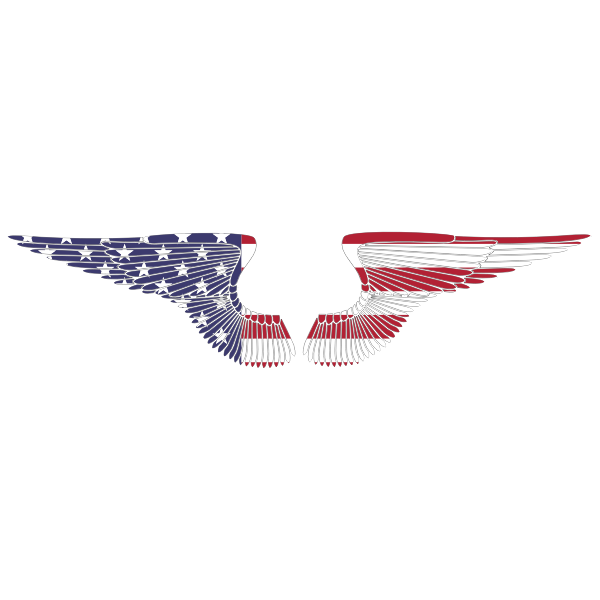 American Hand Drawn Wings With Stroke