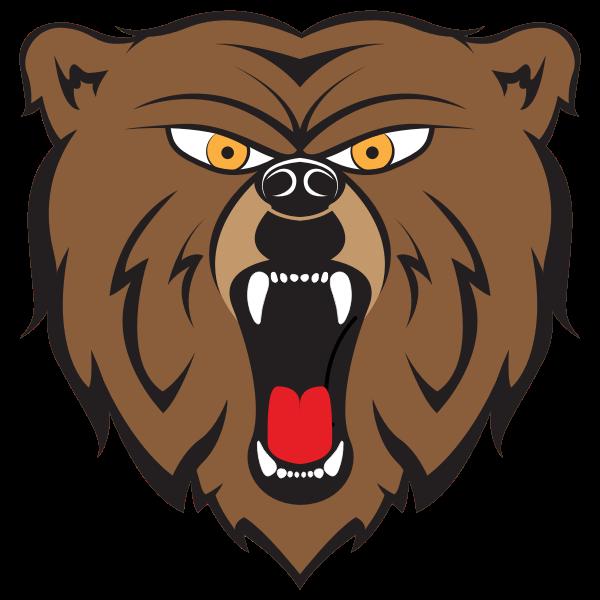 Angry Bear By HulmDesign