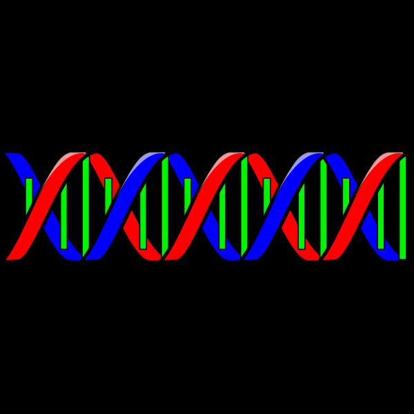 DNA-1632136944