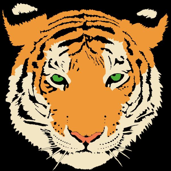 Vector clip art of young tiger's head