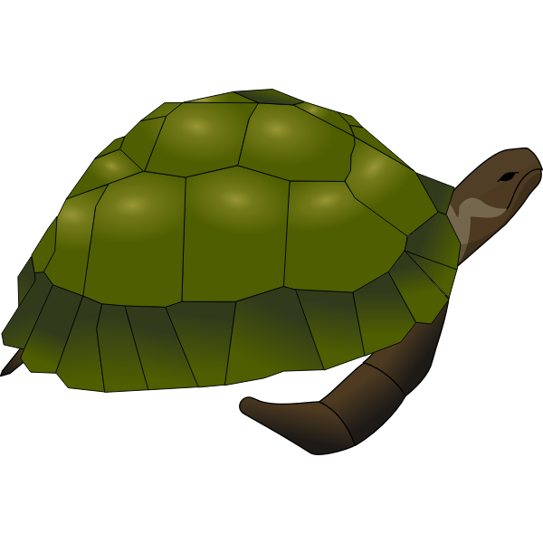 Clip art of large old turtle in green and brown