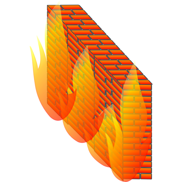 Photorealistic firewall for computer networks vector image
