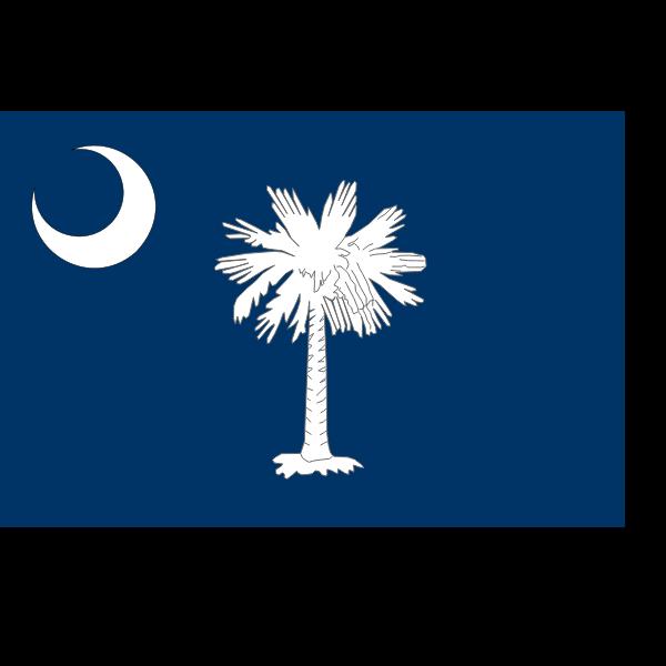 Vector flag of South Carolina