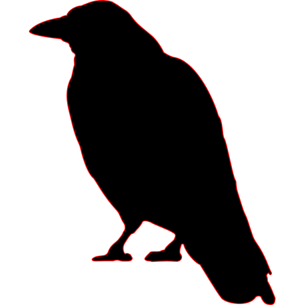 Silhouette image of a crow