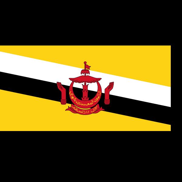 Flag of Brunei Darussalam vector image