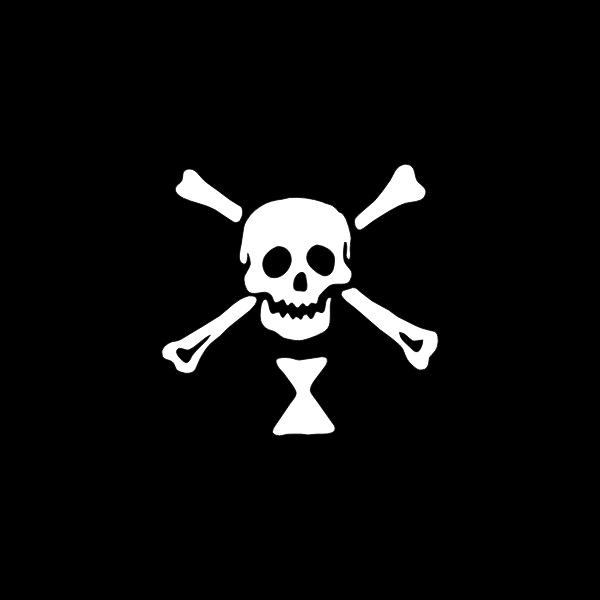 Pirate flag skull and bones vector image
