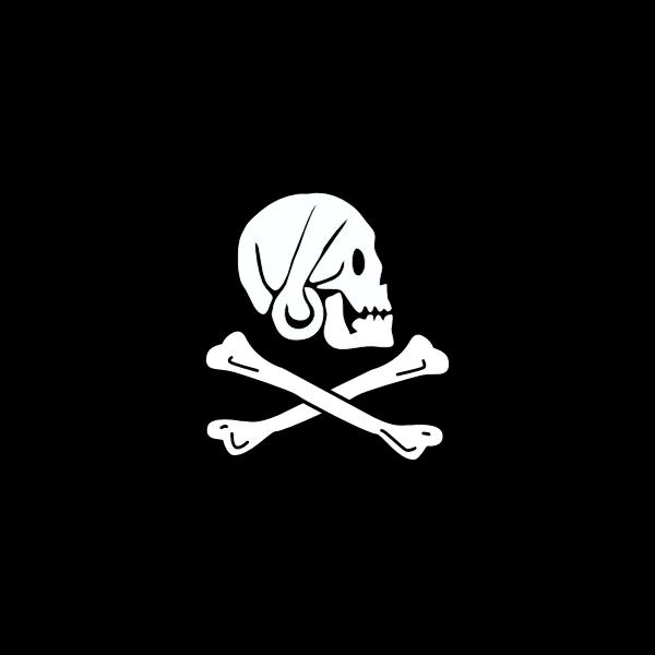 Pirate flag bones and skull vector image