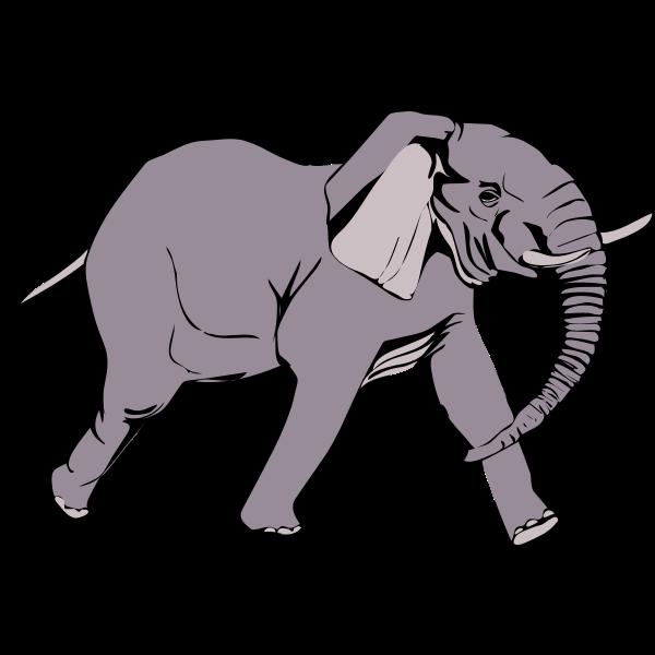 Architetto -- Elefante in corsa