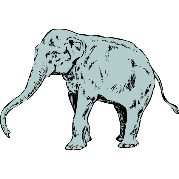 Vector clip art of blue young elephant