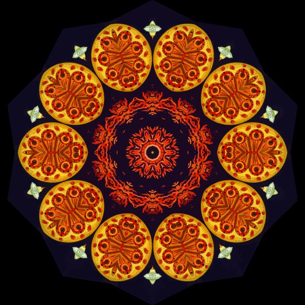 Ascidiae2