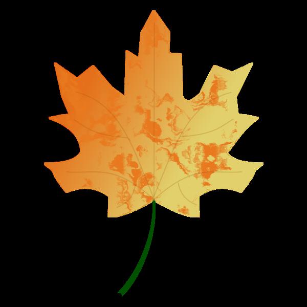 Autumn Leaf 5