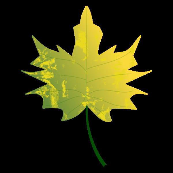 Autumn Leaf 6