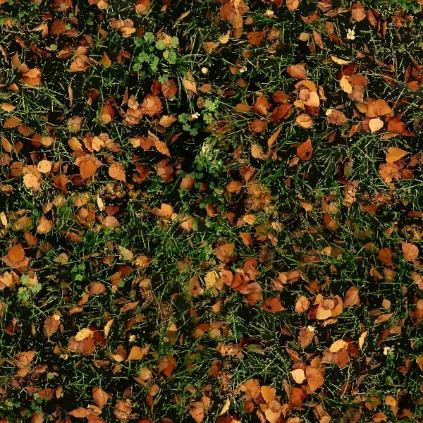 AutumnGrass