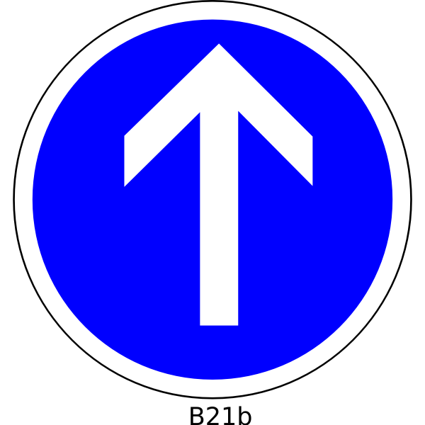 Direction straight on only road sign vector image