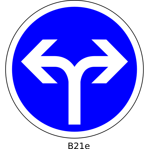 Right or left direction only road sign vector image