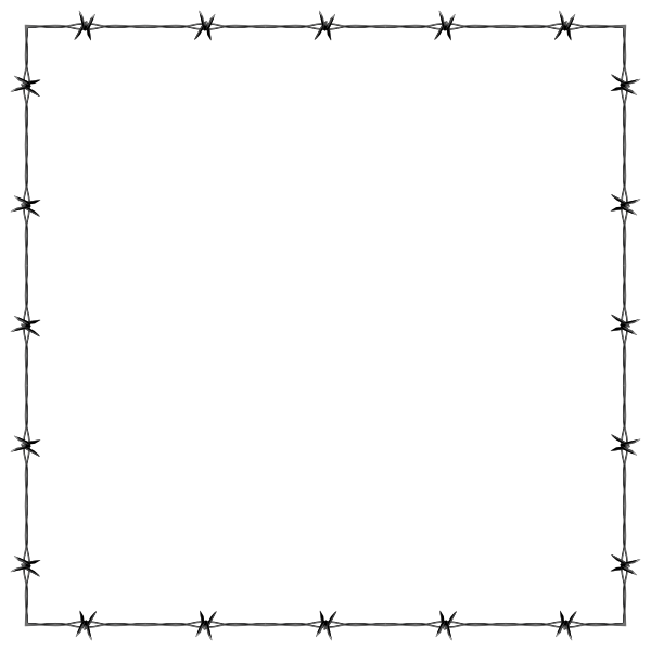 Barbed Wire Frame Border