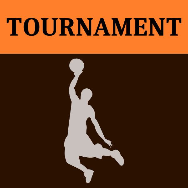 Basketball tournament icon vector image