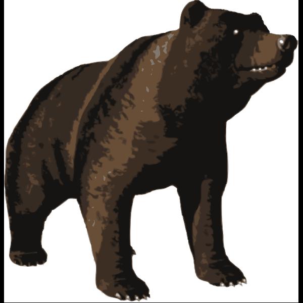 Vector image of huge brown bear