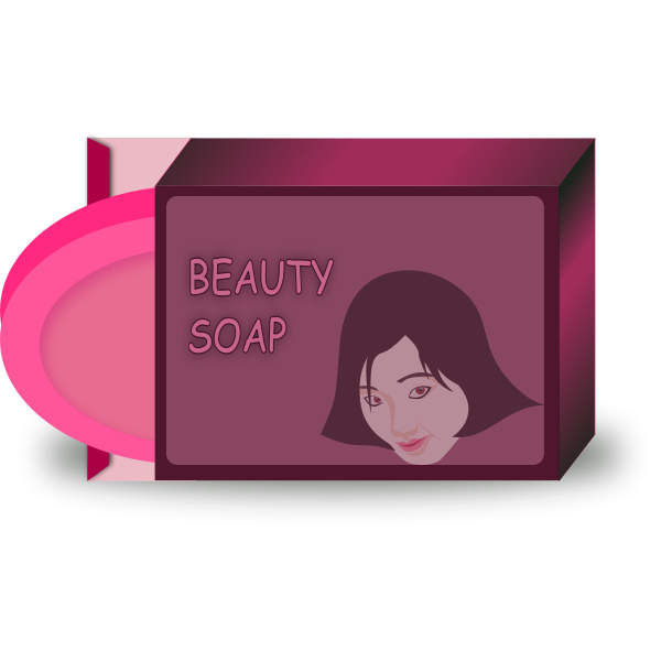 Asian beauty soap vector image