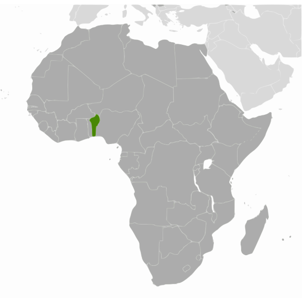 Benin state image