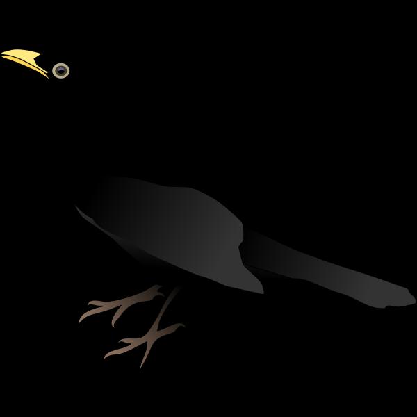 Bird Black NEW