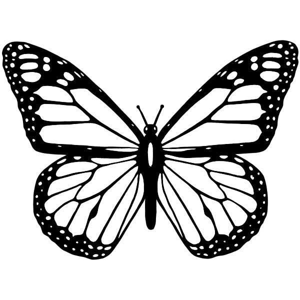 Vector clip art of black and white butterfly with wide spread wings