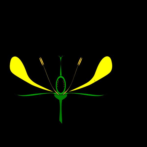 Diagram of flower vector image