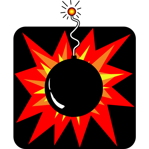 Bomb sign vector image
