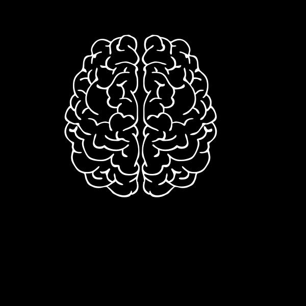 Brain In Man Head