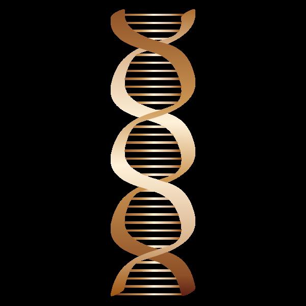 Bronze DNA icon