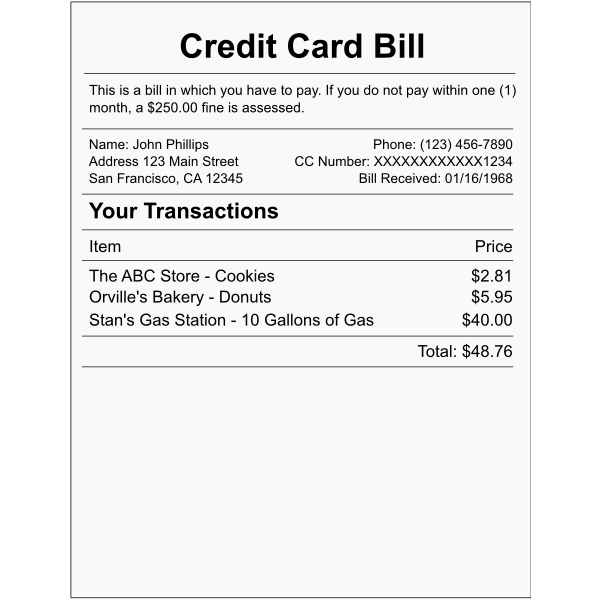 Vector illustration of credit card bill example