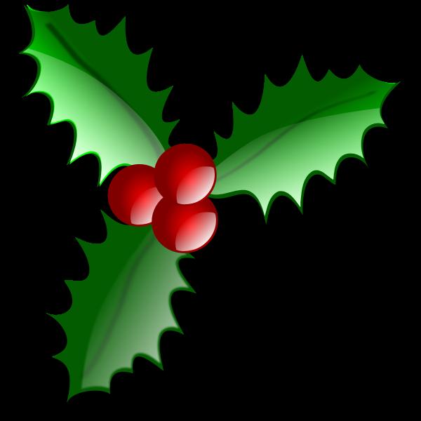 Christmas flower decoration