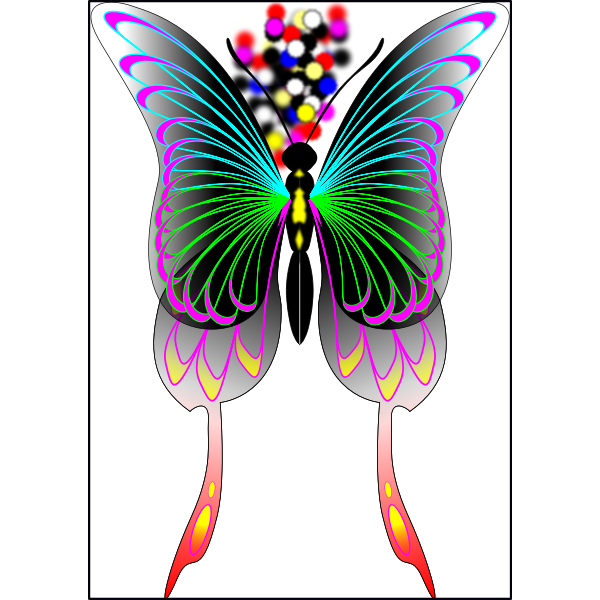 Wings with color