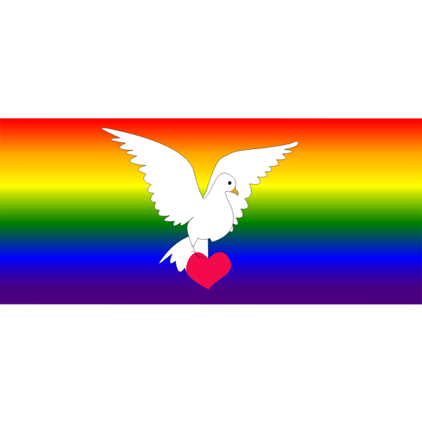 White dove and a rainbow flag