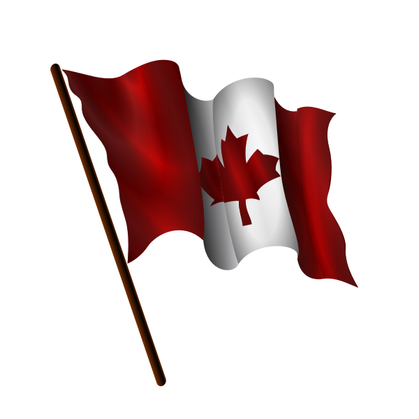 Waving Canadian flag vector image