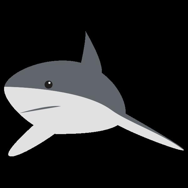 Cartoon shark image