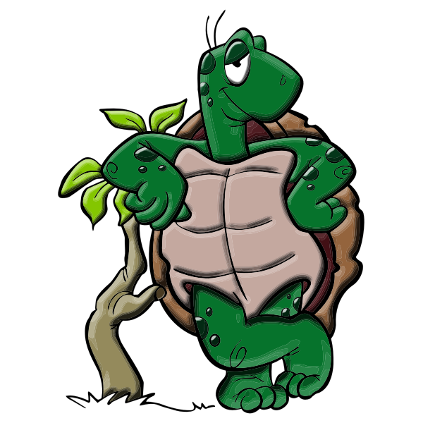 Cartoon turtle-1575552480