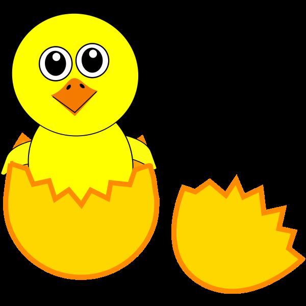 Newborn chick vector image
