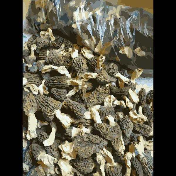 Chinese factory directly supply dry mushroom Porcini Shiitake Champignons 1 2016050356