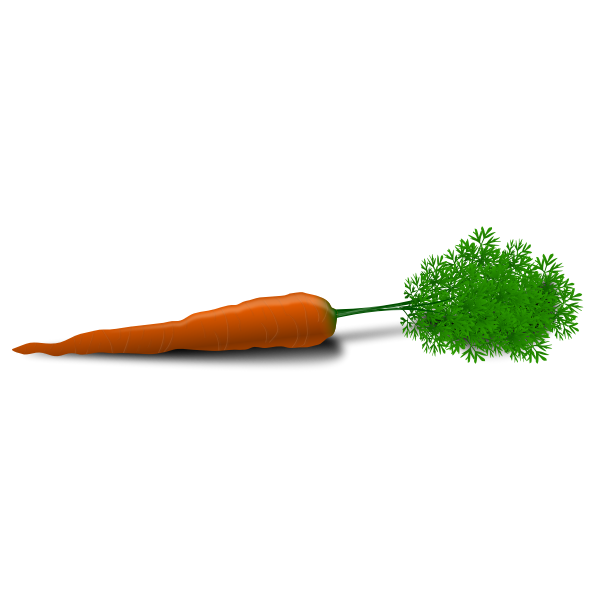 Vector image of a carrot