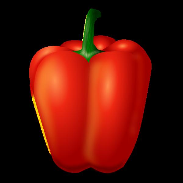 Capsicum fruit vector image
