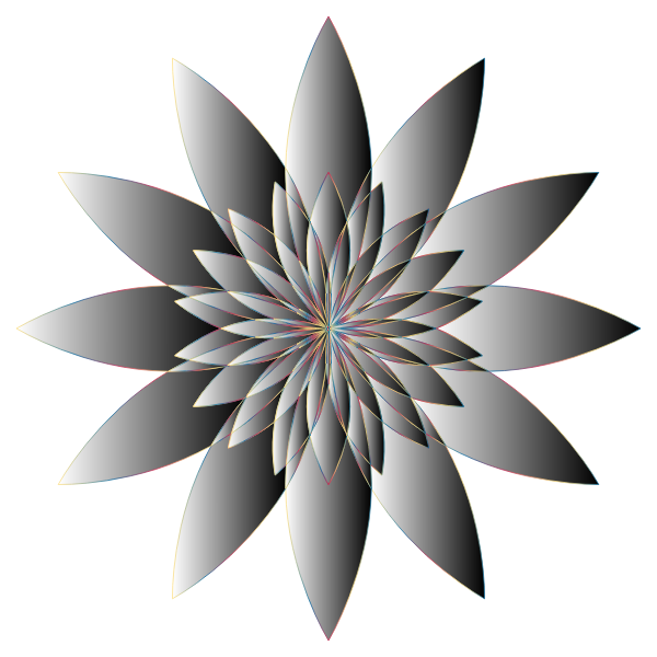 Chromatic Flower 16 No Background