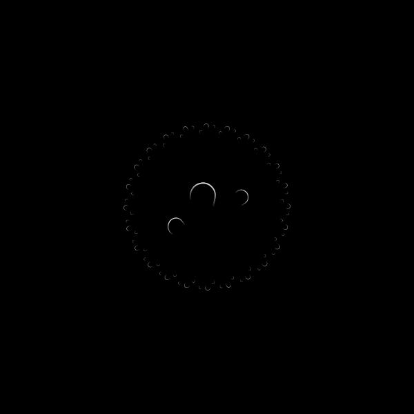 Vector drawing of circle petal border