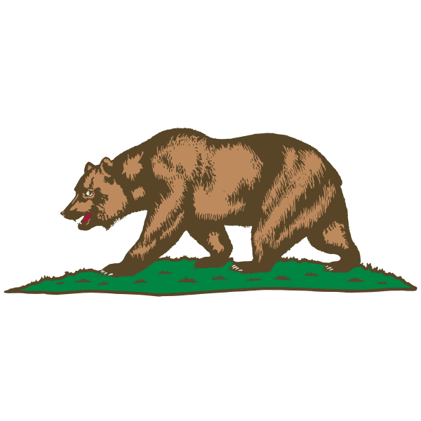 Bear walking on grass vector image