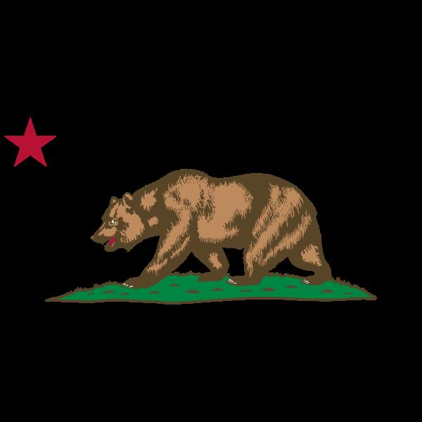 Bear walking under red star vector image