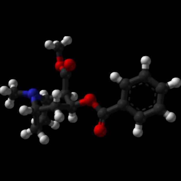 Chemical molecule cocaine