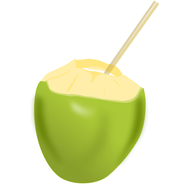 Coconut with a straw vector clip art